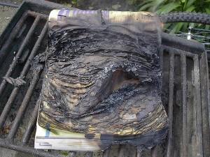 BurnedPhoneBook